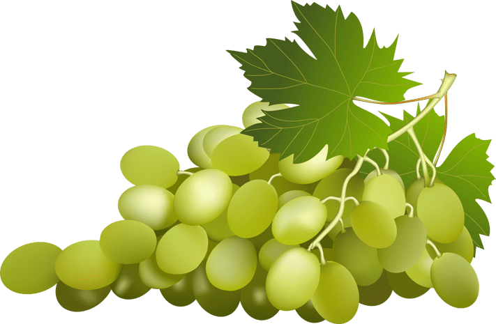 Can grapes protect against metabolic syndrome related - Calorie uva bianca da tavola ...