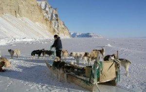 Greenland Scientists Break Diabetic Genetic Code